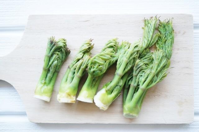 きょうの料理【土井 善晴】「たらの芽とこごみの芋あえ」おさらい&付け合わせ