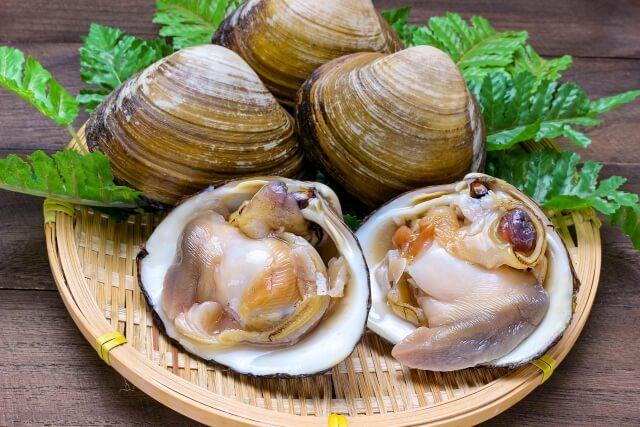 【青空レストランレシピ】「ホッキ貝ごはんの出汁茶漬け」おさらい&付け合わせに合う料理
