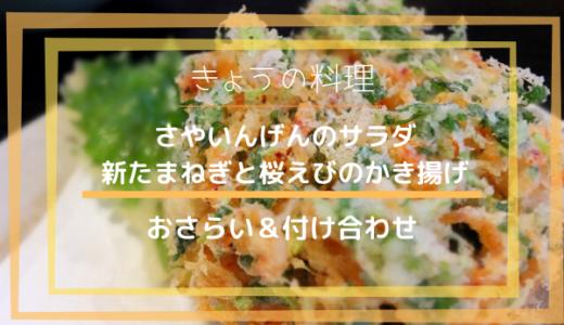 きょうの料理【土井善晴】「さやいんげんのサラダ」「新たまねぎと桜えびのかき揚げ」おさらい&付け合わせ